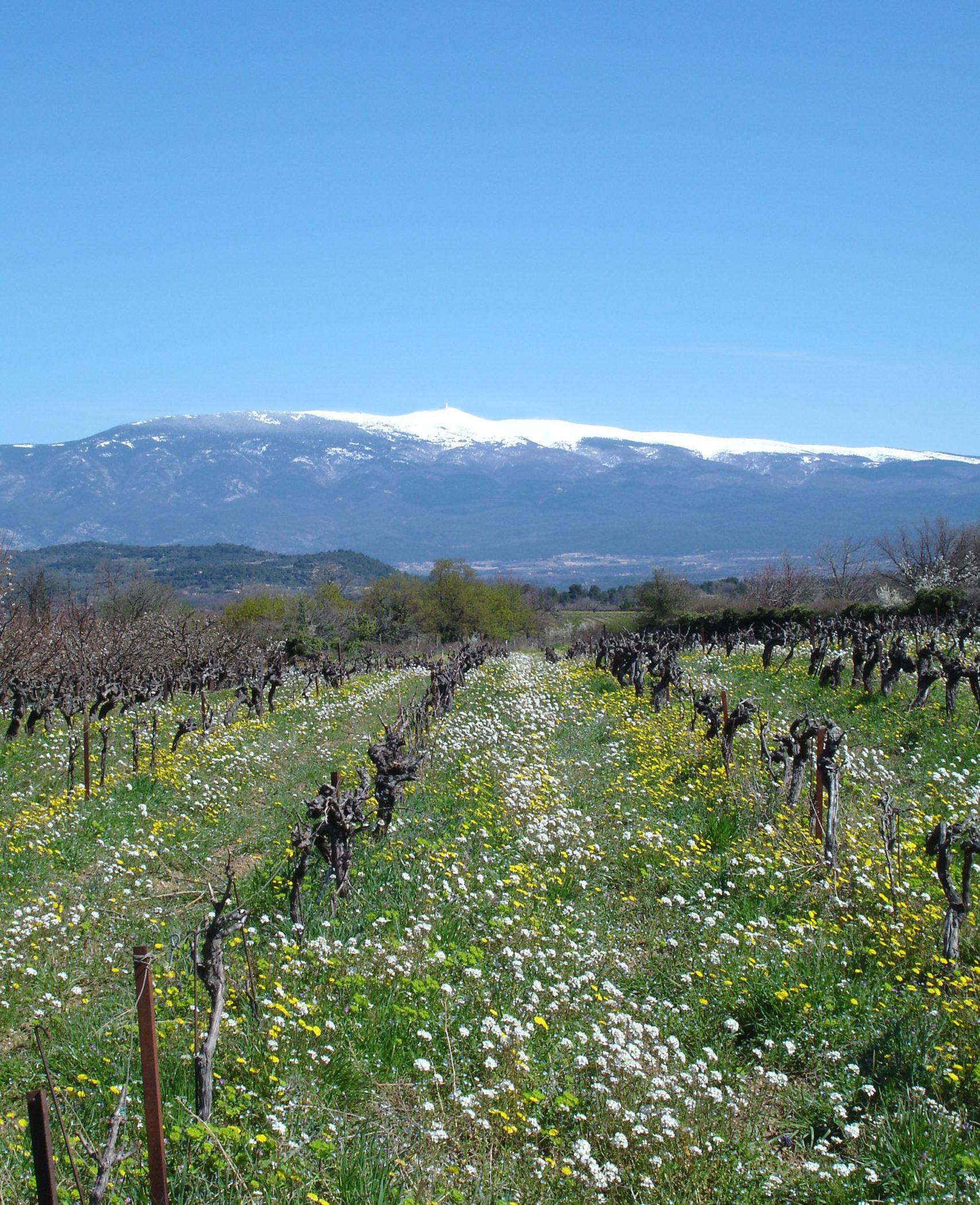 Mont ventoux paques 2010